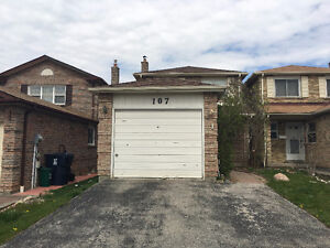 Mccowan and Finch WHOLE HOUSE FOR RENT