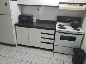 place for one person in 1 bedroom basement
