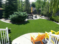 Synthetic Grass Business 4 sale