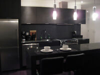 SPECIAL!!! 8 Charlotte St - JR 2 Bedroom Suite (King / Spadina)