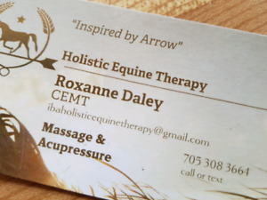 Equine Massage & Acupressure Therapy