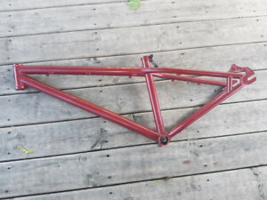 Specialize P1 Bike Frame