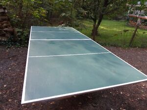 Ping pong table & access.
