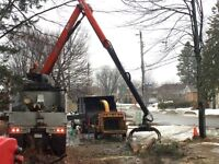 Tree removal, pruning, stump removal, excavating