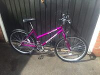Ladies ridgeway mountain bike