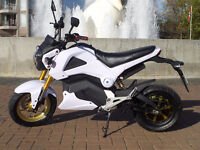 Electric Motorcycle Scooter