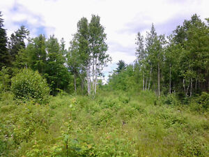 10 ACRES, PRIVATE COUNTRY SETTING IN SALISBURY AREA