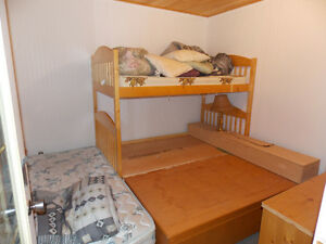 GORGEOUS PIGEON LAKE CABIN.  2 BED, 2 BATH.  STEPS TO THE LAKE! Strathcona County Edmonton Area image 13