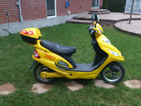 Electric Scooter 2008