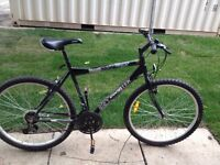 Ridgerunner mountain bike