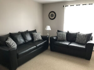 Leather Sofa and Loveseat with matching pillows.