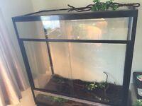 Xl large glass vivarium viv for sale over 3foot
