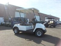 SNOW WHITE golf cart