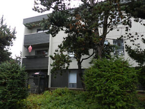 Lovely 2 bedroom apartment condo