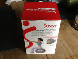Sunny Excercise Ball with pump