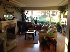 Looking for Fabulous Roommates! Close to SFU and we love Dogs!