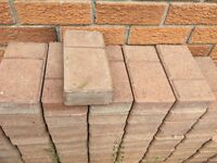 Patio stones / interlock bricks