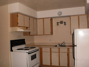 2 BR close to Jones Lake and Downtown – Utilities included