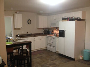 Very nice 2 Bdrm newly renovated basement suite for rent