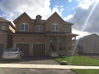 New Large 3000+ Sq ft det. 4 Bedroom (all w/ Bathroom) huge yard