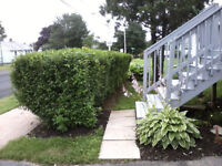 Gardening, landscaping, cultivating, spring clean-up