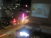 Outdoor Media Projections