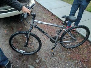 Giant  Soft Tail Mountian Bike
