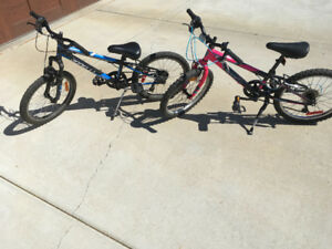 $50 bikes in good condition!