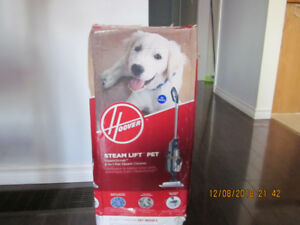 Hoover SteamScrub 2 in 1