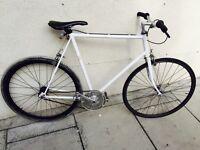 Single speed track bike lihfh
