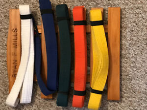 Karate belts up to white