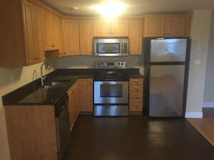 Large 1 Bedroom Downtown Sublet