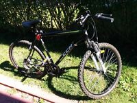 CCM Adult Bicycle For Sale