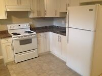 New 2 beds Bsmt Suite/ also Master Suite avail - 5  mins SIAST