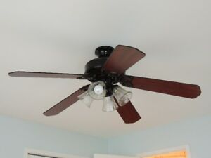 Two (2) Ceiling Fans with lights: