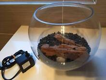 Fish bowl with new pump, gravel, driftwood Ryde Ryde Area Preview