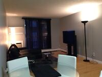 1 bed condo River heights, in suite laundry and utils/wifi inc