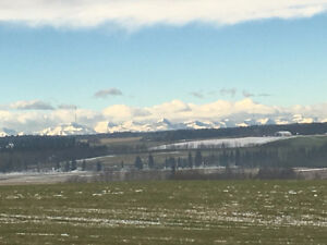 Bare Acres With Mountain View Sundre MLS: CA0102023