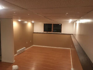 Large basement suite avail Feb 1