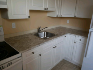 White Kitchen Cabinet Doors With Knobs