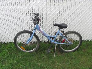 Bicyclette 18 pouces pour fille