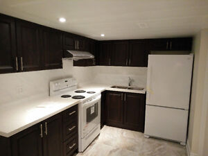 2 Bedroom 2 Bright Basement Freshly Renovated in Richmond Hill