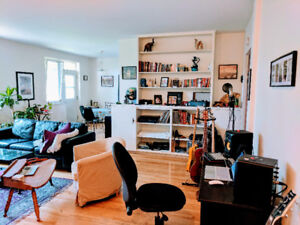 Beautiful Spacious apartment Heating included - Montreal