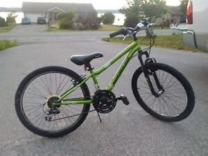 "Reduced price -- 24"" wheeled Nakamura Agyl Youth Mountain Bike"