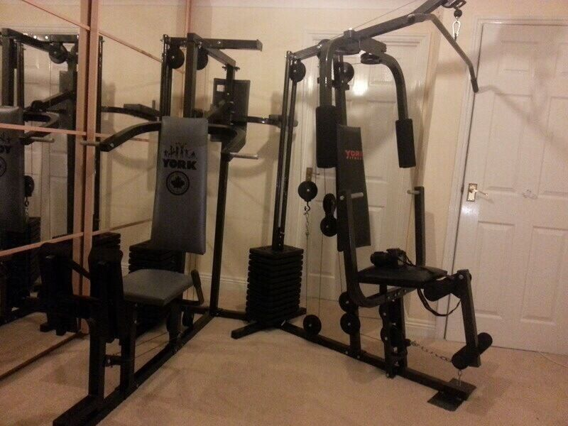 York multi gym model purchase sale and exchange ads
