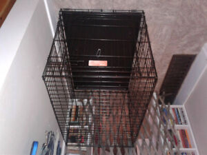 Wanted: Large dog crate