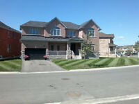 █ * STUNNING UNIQUE HOME * HUGE 114 FT LOT * TON OF UPGRADES * █