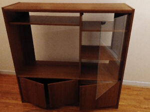 TV Cabinet with Glass Door