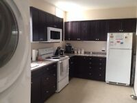 FULLY RENOVATED EXTRA LARGE 3BR DOWNTOWN GREAT LOCATION