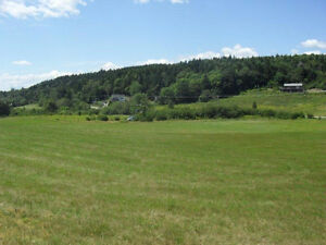 4.5 Beautiful Waterfront Acres on the Kennebecasis River!
